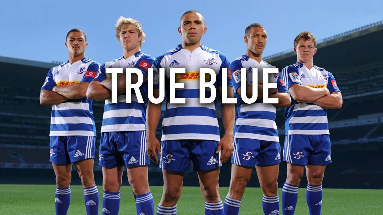 Stormers Picture: TRUE BLUE – Wall Paper